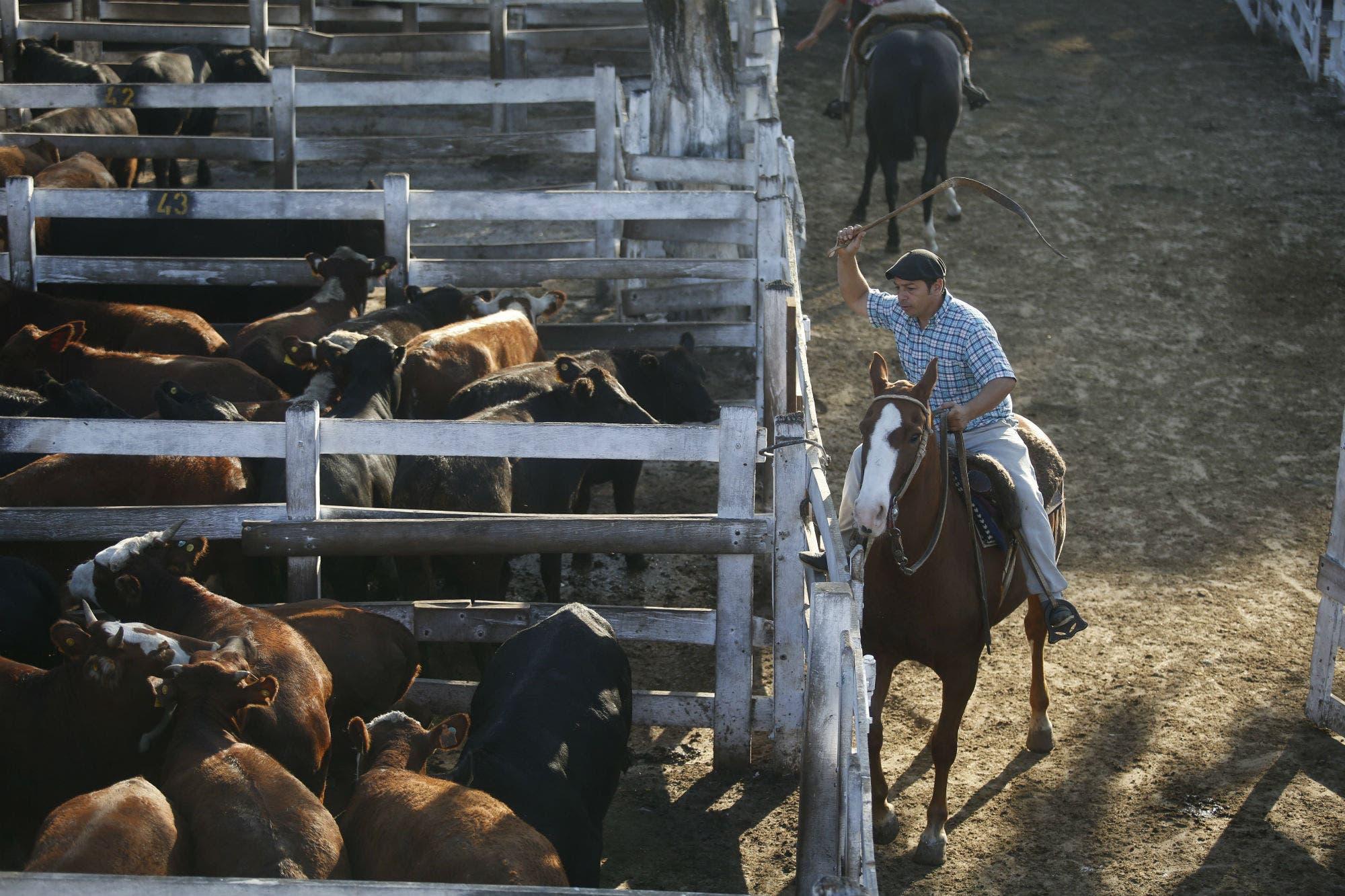 Liniers: saldo a favor de la hacienda