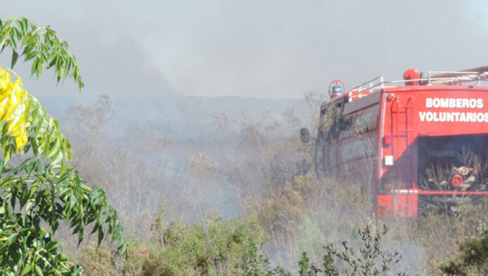 Incendio de margnitid azota la zona de Mabragaña