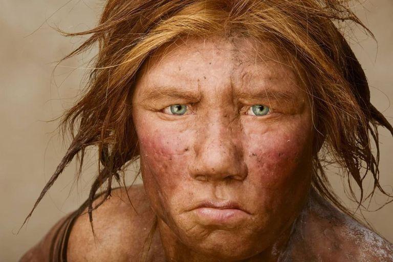 menu-prehistorico:-revelan-que-comian-los-neandertales-hace-60.000-anos