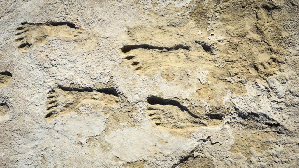 huellas-de-23.000-anos-reescriben-la-historia-humana-de-america-del-norte
